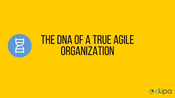 The DNA of a true agile organization